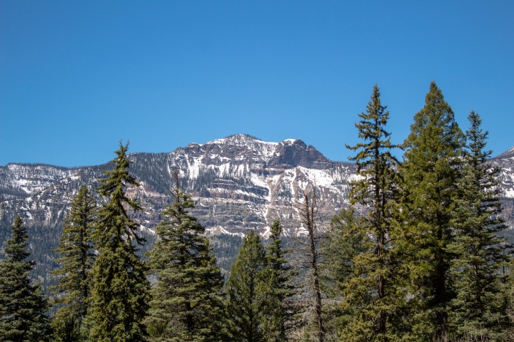 Quick hike up Treasure Falls to find this breathtaking view of the Rocky Mountains.