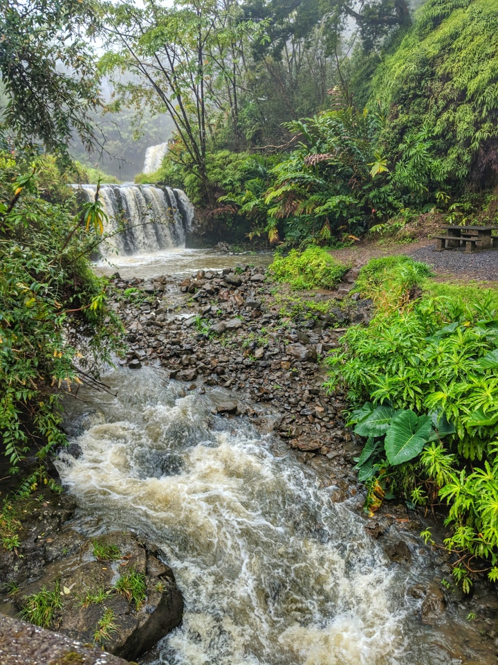 The flowing Pua'a' Ka'a Falls.