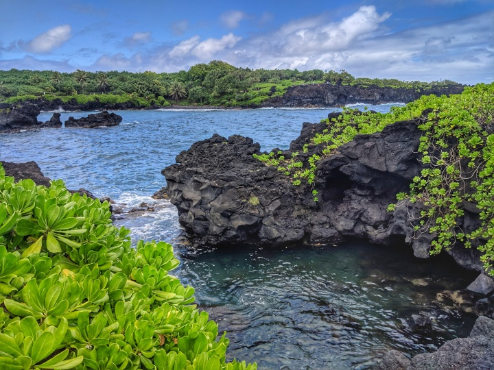 One of many swimming holes along the Road to Hana.